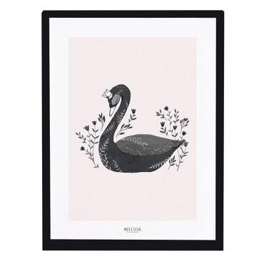 Affiche encadrée 30x40 cm - Cygne noir